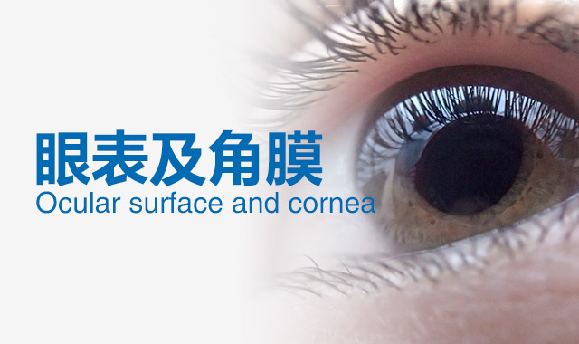 眼表角膜专科
